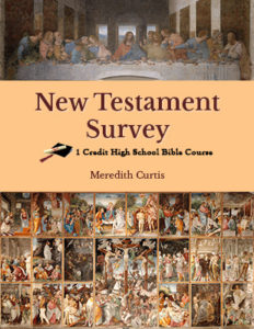 New Testament Survey Class