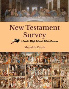 New Testament Survey Class