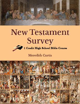 NewTestament Survey Class
