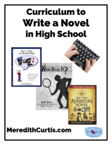 Curriculum to Write a Novel