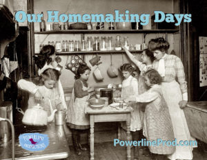 Our Homemaking Days