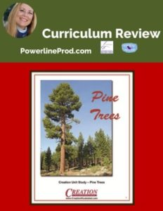Homeschool Curriculum Review of Pine Trees Unit Study from Creation Illustrated
